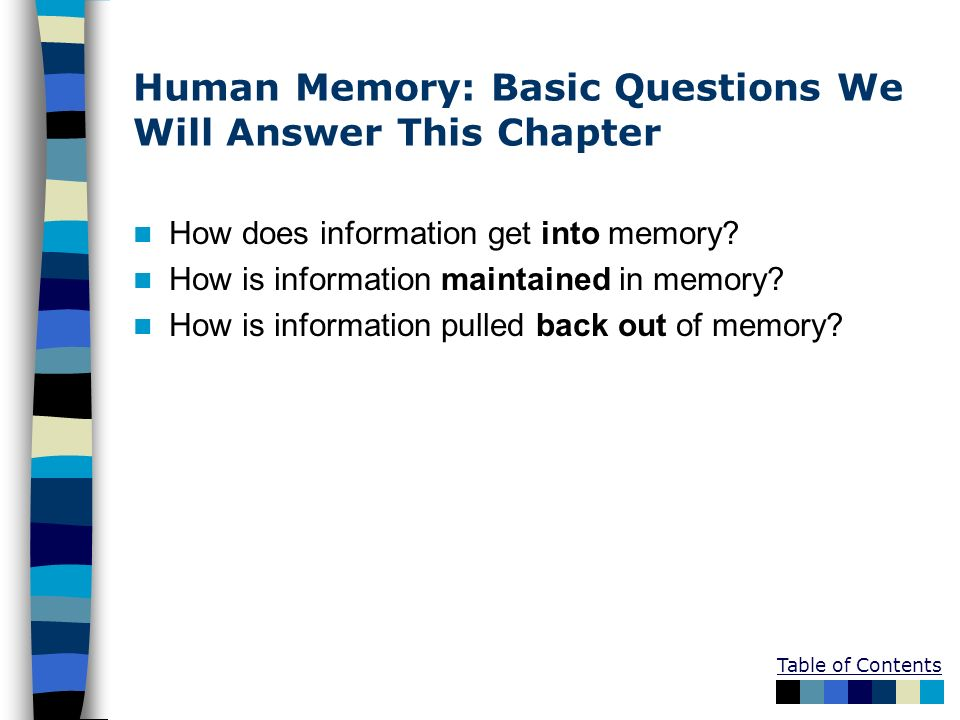 Table of Contents Human Memory: Basic Questions We Will Answer This Chapter How does information get into memory? How is information maintained in mem