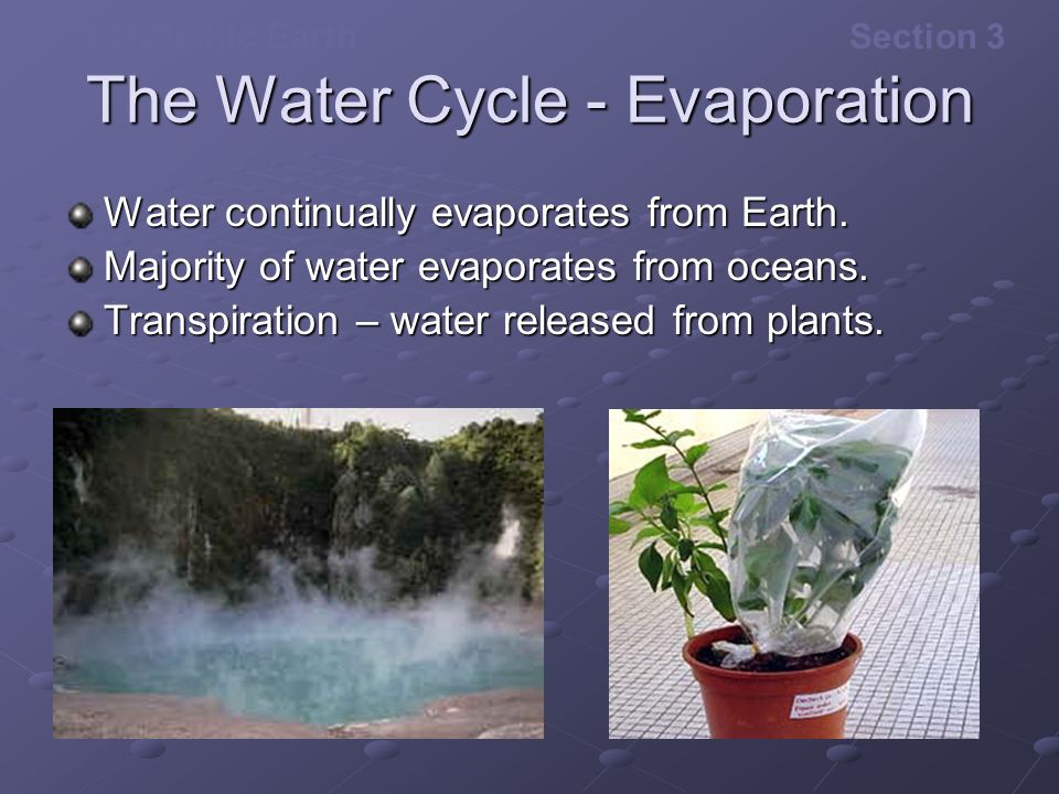 Transpiration Water Cycle Transpiration Water Released