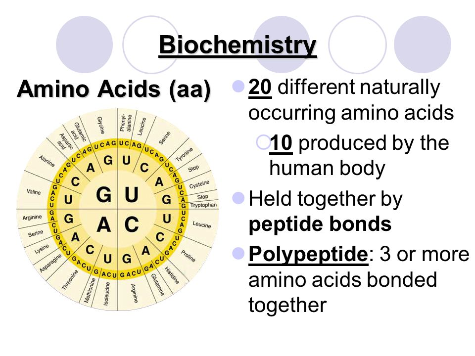 Biochemistry Amino Acids (aa) Each has a distinctive characteristic Same basic structure: Four groups attached to a central carbon atom Acid Group (COO) Amino Group (NH 3 ) Hydrogen Atom (H + ) R-Group Determines the amino acid