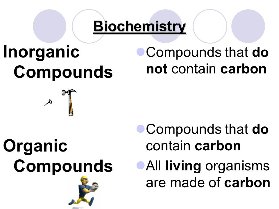 Biochemistry Biochemistry Study of science that explores how properties of CHEMICALS make life possible