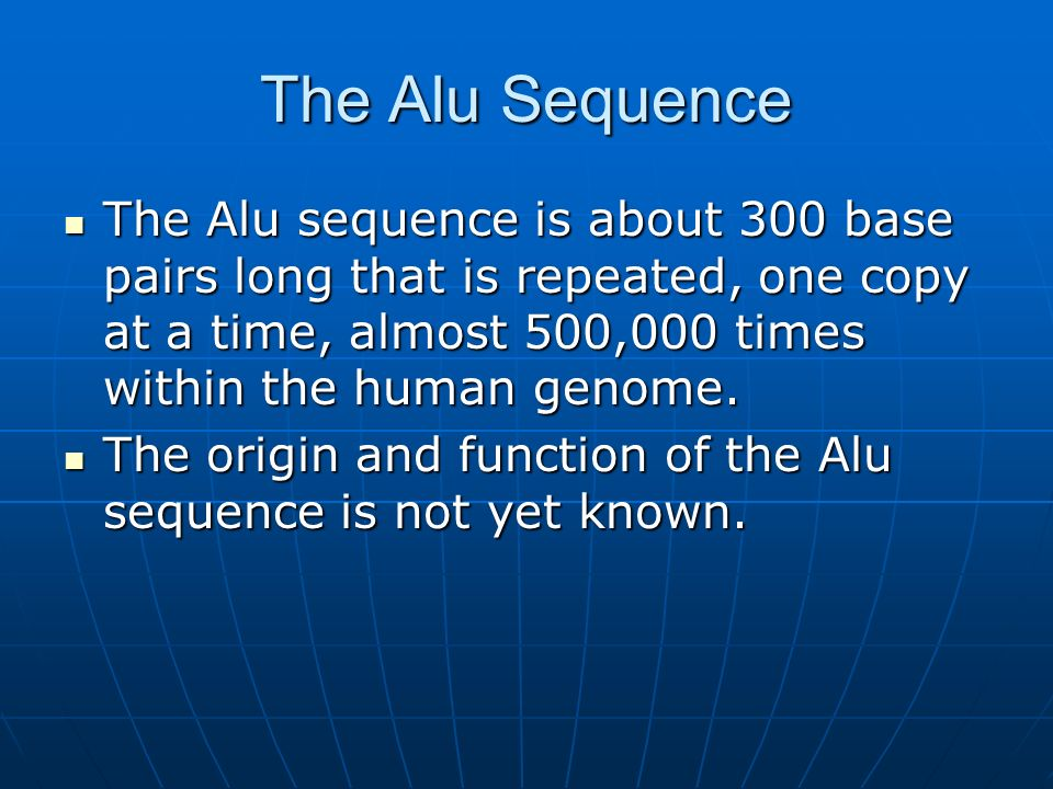 The Alu Sequence The Alu sequence is about 300 base pairs long that is repeated, one copy at a time, almost 500,000 times within the human genome.