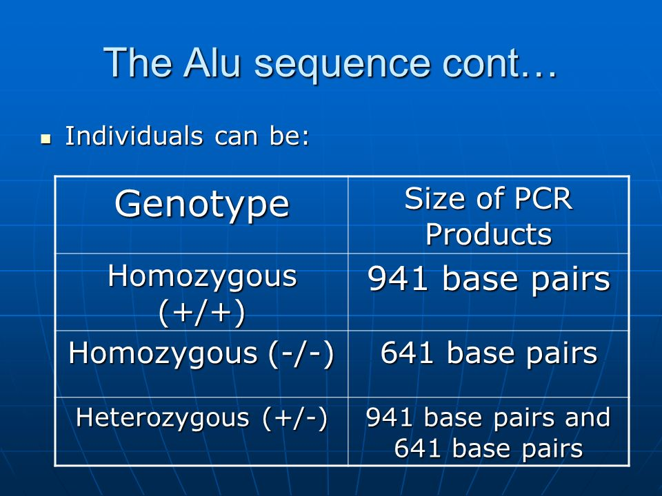 The Alu sequence cont… Individuals can be: Individuals can be: Genotype Size of PCR Products Homozygous (+/+) 941 base pairs Homozygous (-/-) 641 base pairs Heterozygous (+/-) 941 base pairs and 641 base pairs