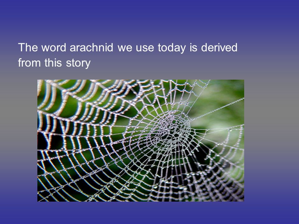 The word arachnid we use today is derived from this story