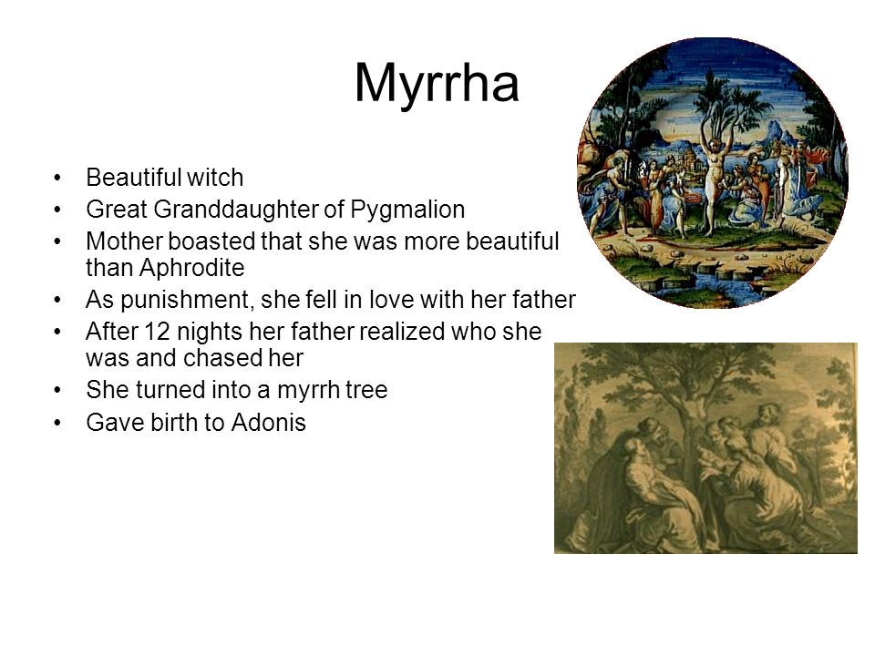 Myrrha Beautiful witch Great Granddaughter of Pygmalion Mother boasted that she was more beautiful than Aphrodite As punishment, she fell in love with