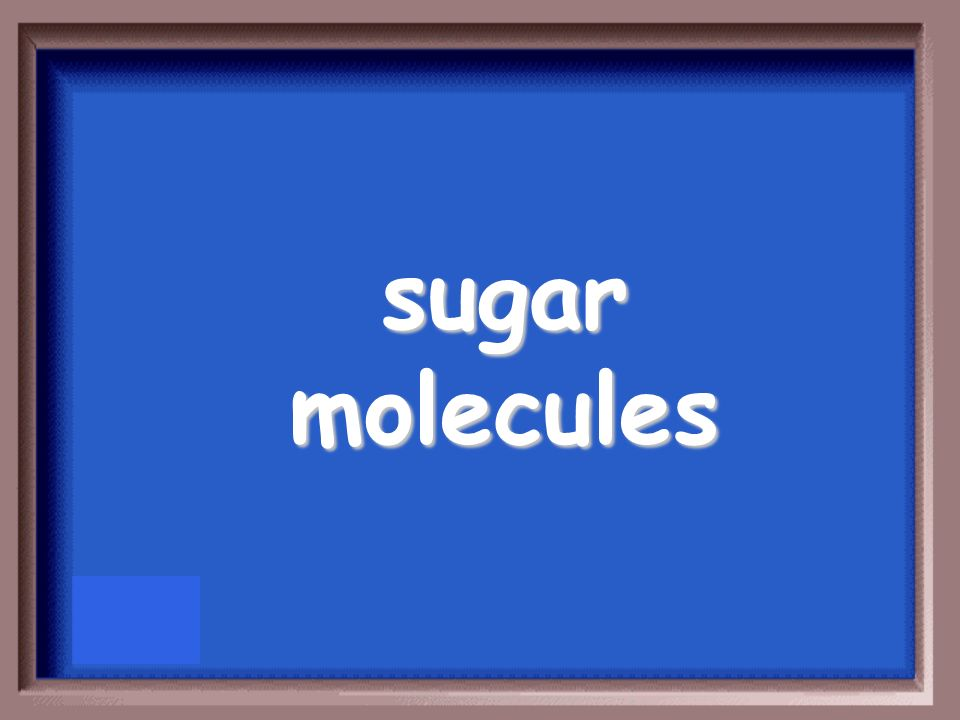 What molecules act as labels for golgi apparatus to read