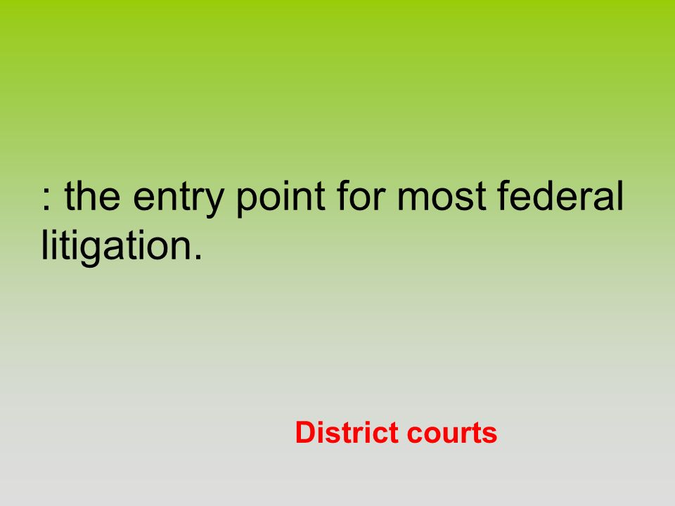 District courts : the entry point for most federal litigation.