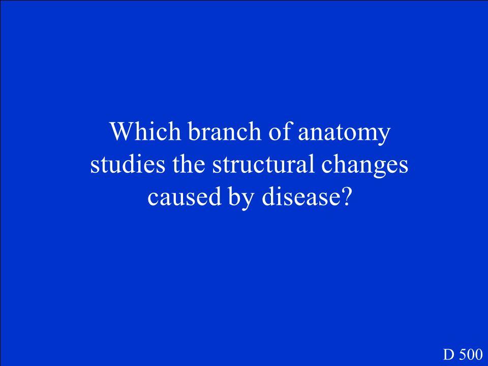 Histology D 400
