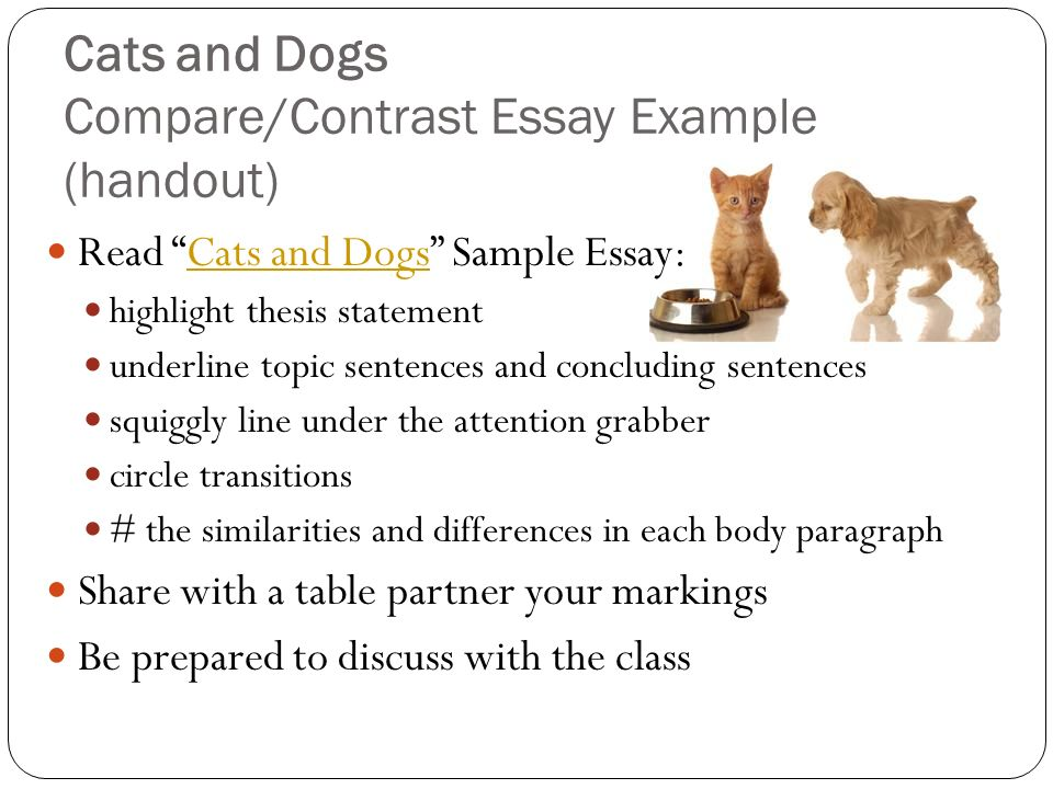 writing main idea thesis statement topic sentences video writing main idea thesis statement topic sentences video - Comparison Essay Thesis Example