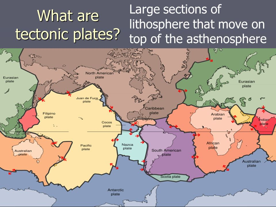 What are tectonic plates? Large sections of lithosphere that move on top of the asthenosphere