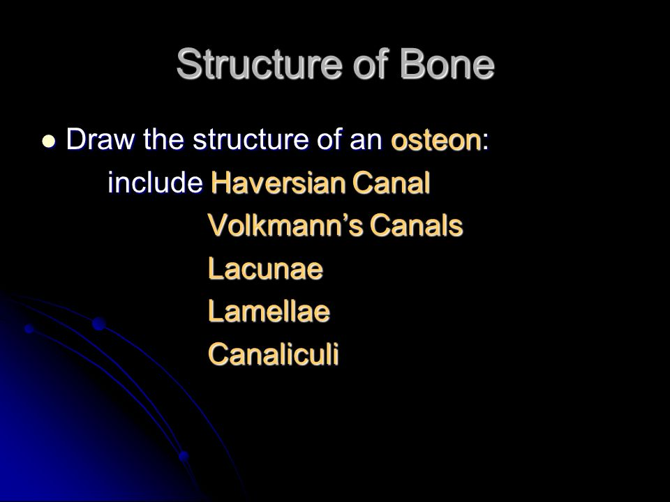 Structure of Bone Draw the structure of an osteon: Draw the structure of an osteon: include Haversian Canal Volkmanns Canals Volkmanns Canals Lacunae Lacunae Lamellae Lamellae Canaliculi Canaliculi