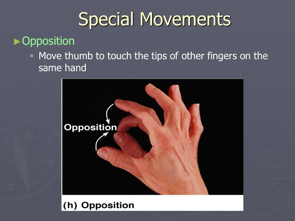 Special Movements Opposition Move thumb to touch the tips of other fingers on the same hand
