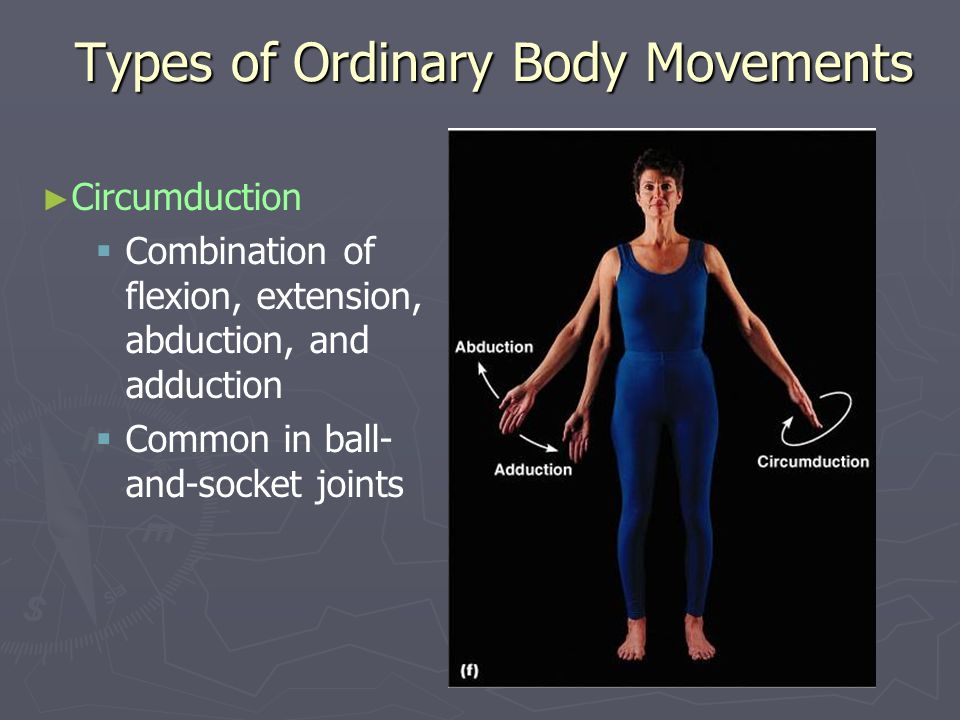 Special Movements Dorsiflexion Lifting the foot so that the superior surface approaches the shin (pointing toes upward) Plantar flexion Depressing the foot (pointing the toes downward)