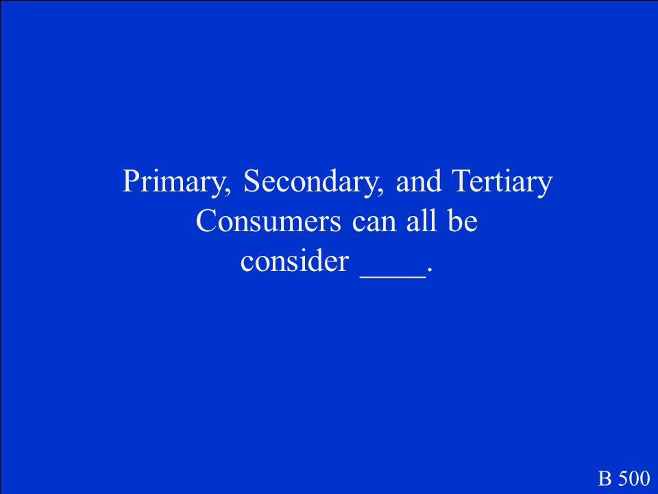 Secondary and Tertiary B 400