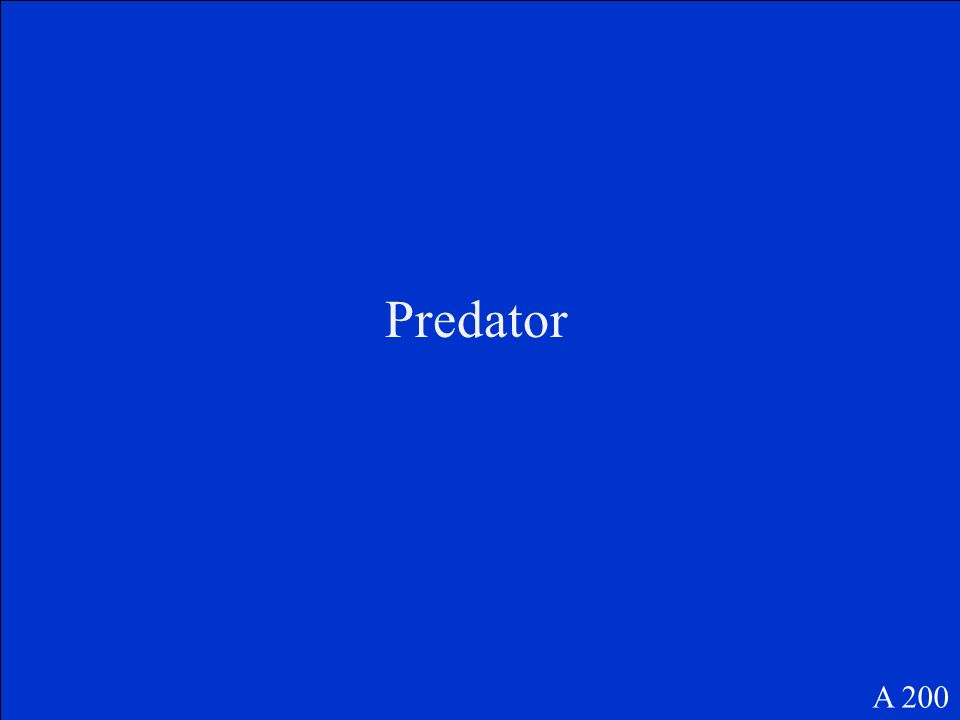 Between the predator and the prey in a food chain, the arrow points towards the ___. A 200