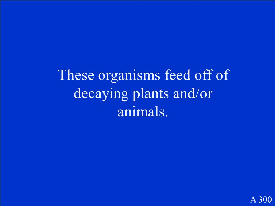 These organisms feed off of decaying plants and/or animals. A 300
