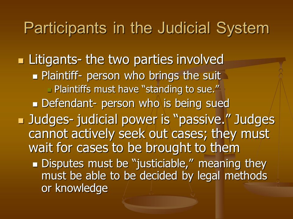 Participants in the Judicial System Litigants- the two parties involved Litigants- the two parties involved Plaintiff- person who brings the suit Plai