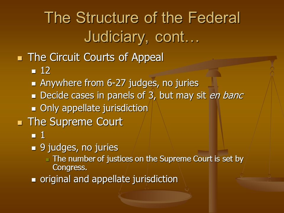 The Structure of the Federal Judiciary, cont… The Circuit Courts of Appeal The Circuit Courts of Appeal 12 12 Anywhere from 6-27 judges, no juries Any