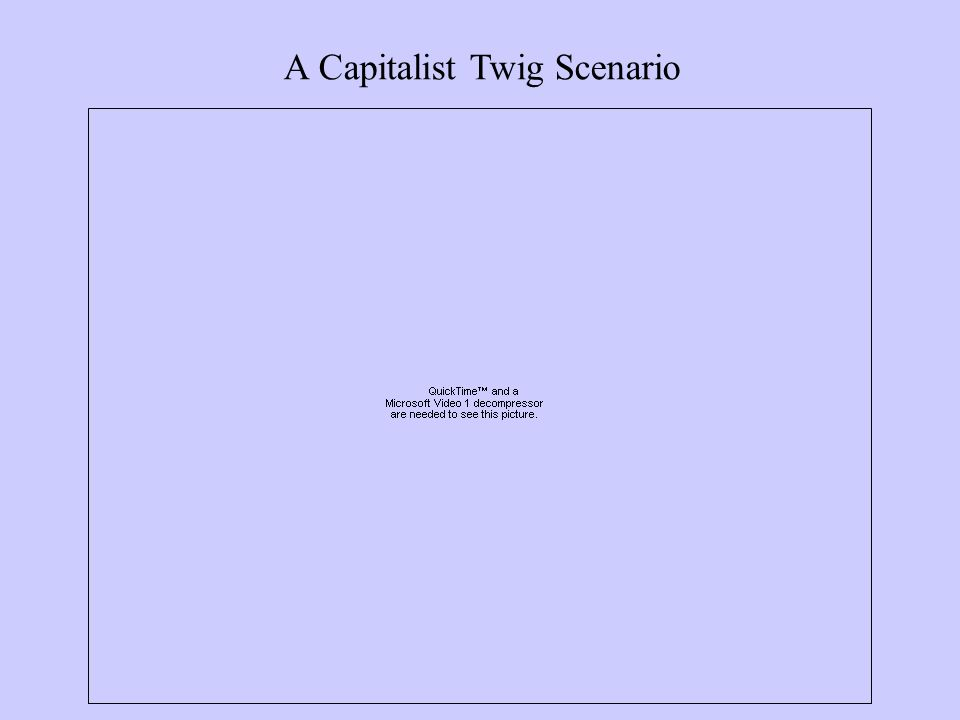A Capitalist Twig Scenario