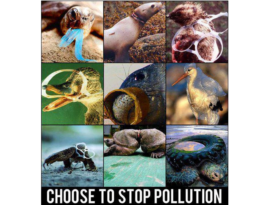 Saving our Ocean Resources Citizens of countries have acted by petitioning their government for stricter laws and starting events like beach clean-ups United States – 1972 – Clean Water Act put EPA in charge of issuing permits for ocean dumping United States – 1972 – US Marine Protection, Research and Sanctuaries Act – prohibit dumping of any material that would affect human health or welfare, the marine environment or ecosystems, or businesses that depend on the ocean.