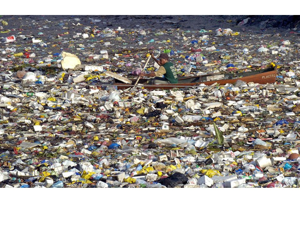 Cleaning it up Imagine that you are in charge of the ocean plastics clean up design a way to clean up the plastics with minimal harm to the ocean biosystem.