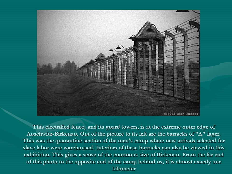This electrified fence, and its guard towers, is at the extreme outer edge of Auschwitz-Birkenau. Out of the picture to its left are the barracks of
