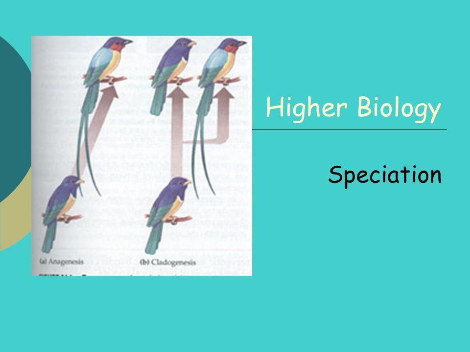 Higher Biology Speciation