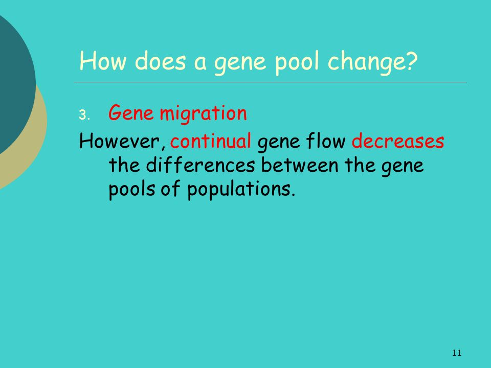 11 How does a gene pool change? 3. Gene migration However, continual gene flow decreases the differences between the gene pools of populations.