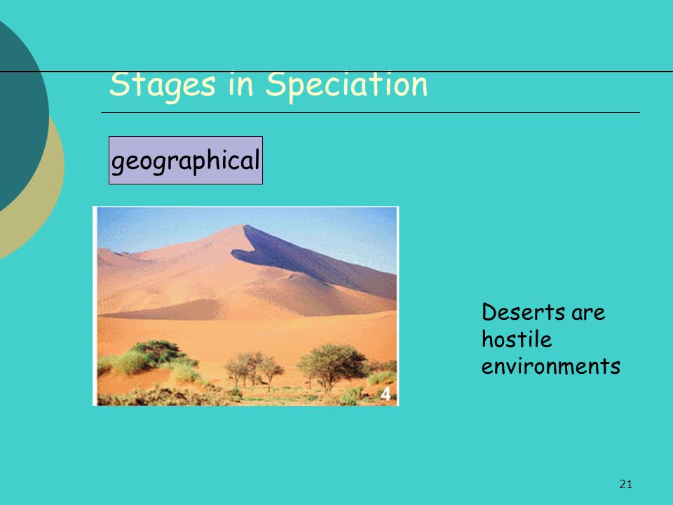 21 Stages in Speciation geographical. Deserts are hostile environments