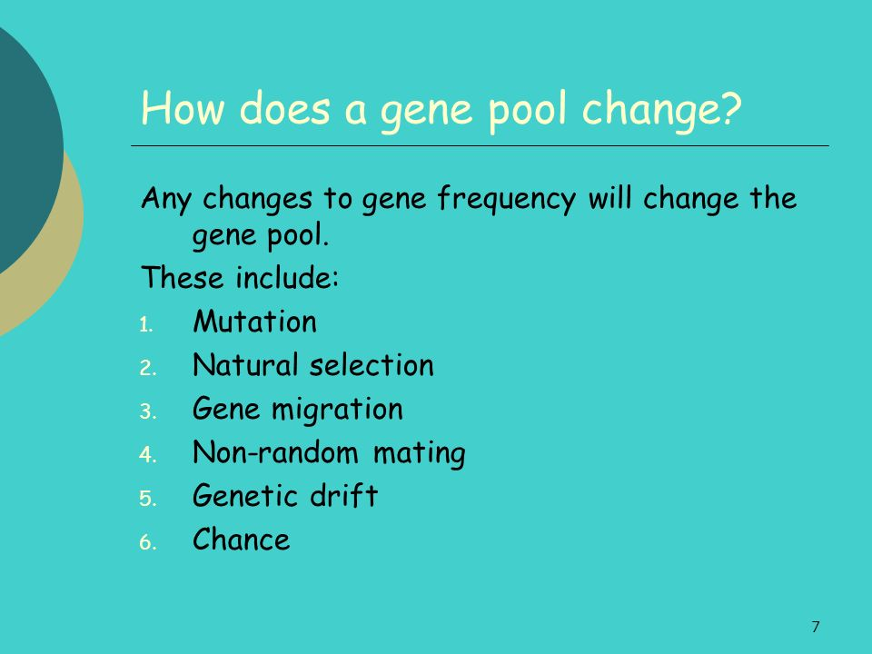 7 How does a gene pool change? Any changes to gene frequency will change the gene pool. These include: 1. Mutation 2. Natural selection 3. Gene migrat