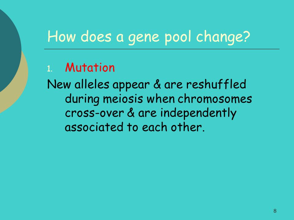 8 How does a gene pool change? 1. Mutation New alleles appear & are reshuffled during meiosis when chromosomes cross-over & are independently associat