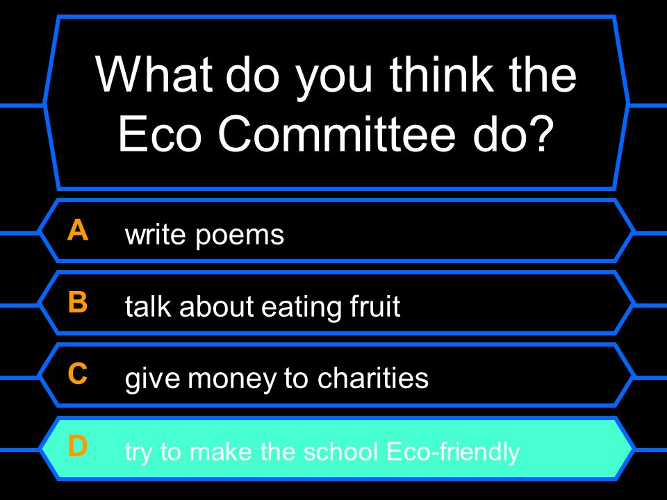 What do you think the Eco Committee do.