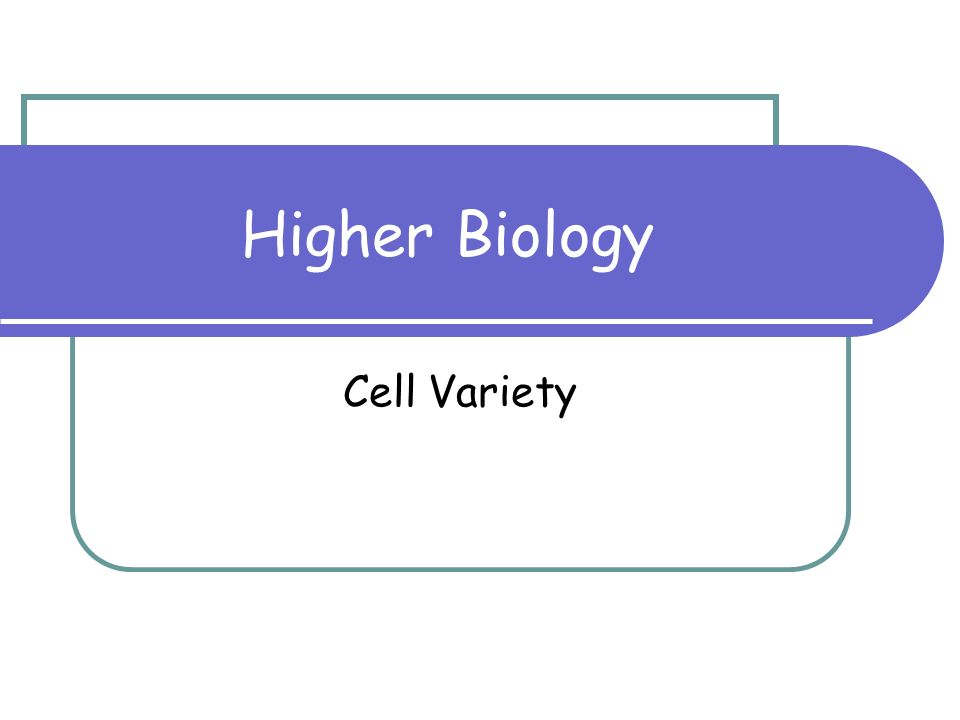 Higher Biology Cell Variety