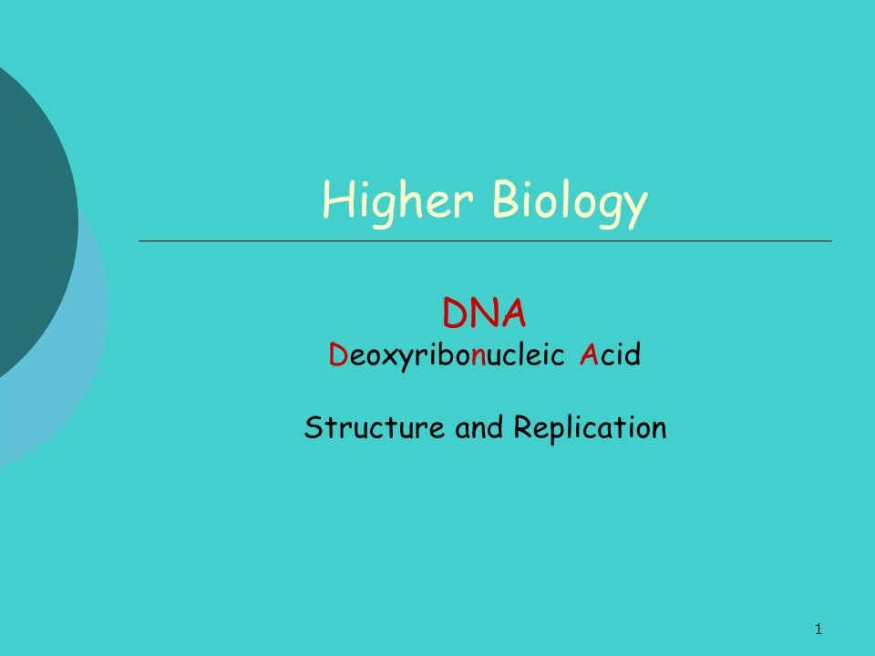 1 Higher Biology DNA Deoxyribonucleic Acid Structure and Replication