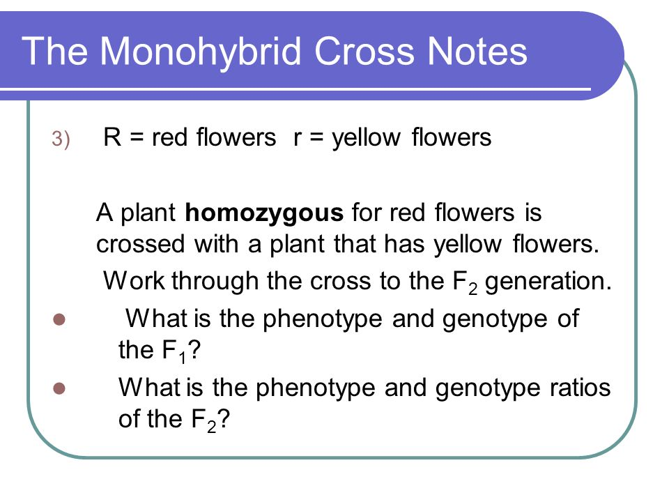 The Monohybrid Cross Notes 3) R = red flowers r = yellow flowers A plant homozygous for red flowers is crossed with a plant that has yellow flowers. W