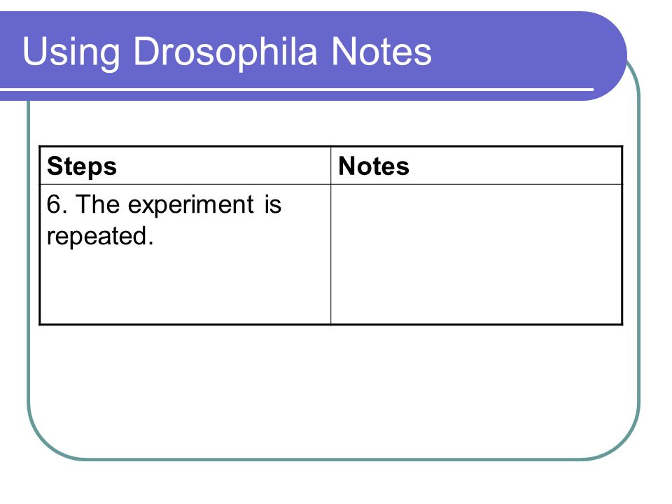 Using Drosophila Notes StepsNotes 6. The experiment is repeated. This improves the reliability of the results.