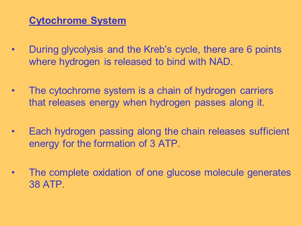 Cytochrome System During glycolysis and the Krebs cycle, there are 6 points where hydrogen is released to bind with NAD.