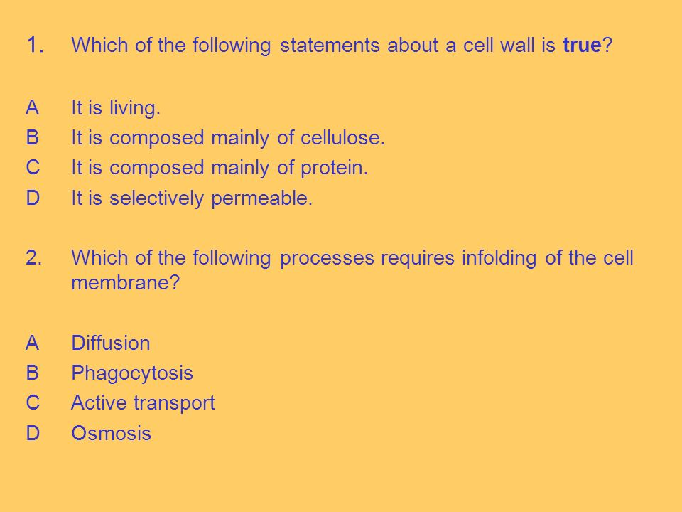 1. Which of the following statements about a cell wall is true.