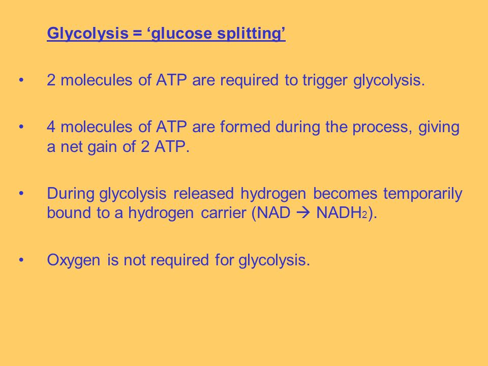 Glycolysis = glucose splitting 2 molecules of ATP are required to trigger glycolysis.
