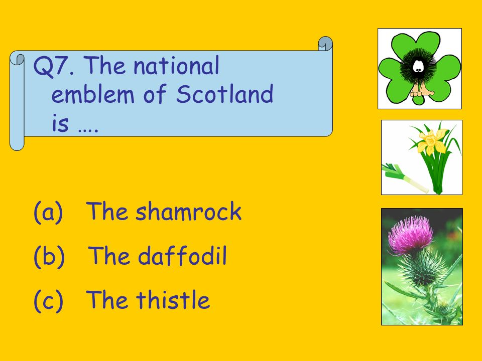 Q8.Which of these Scottish bands is Franz Ferdinand.