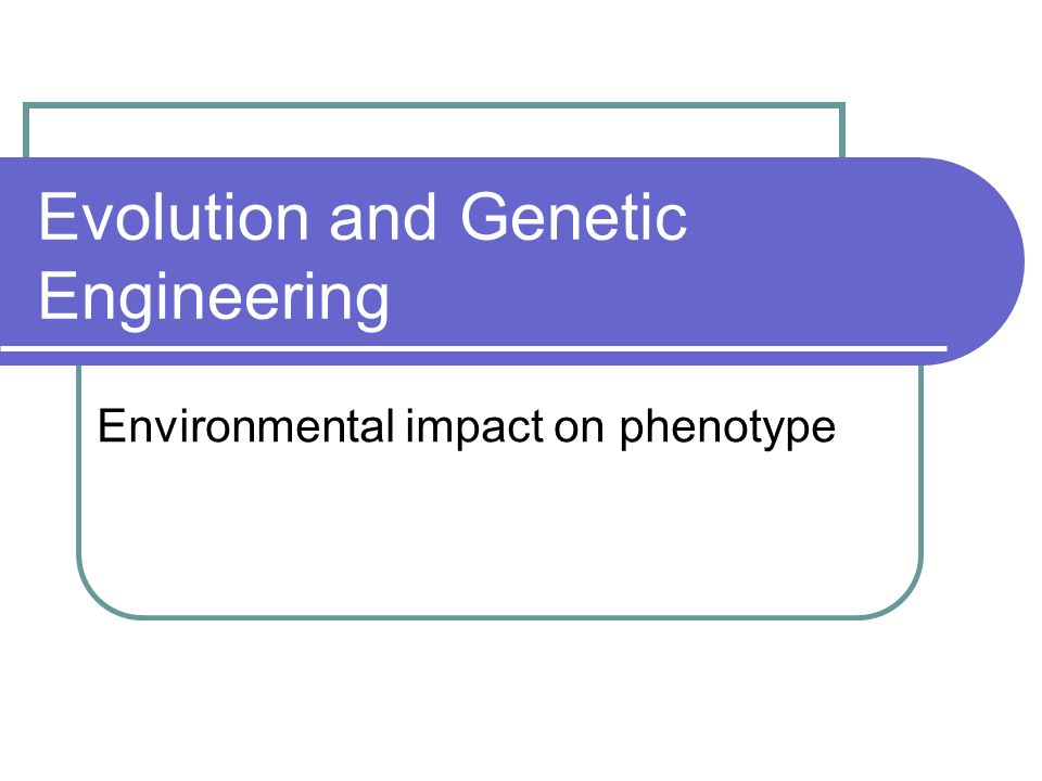 An organisms final appearance (phenotype) is the result of the interaction between its genotype and the environment it develops in.