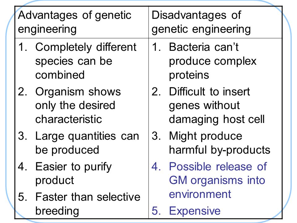 genetic engineering advantages and disadvantages essay
