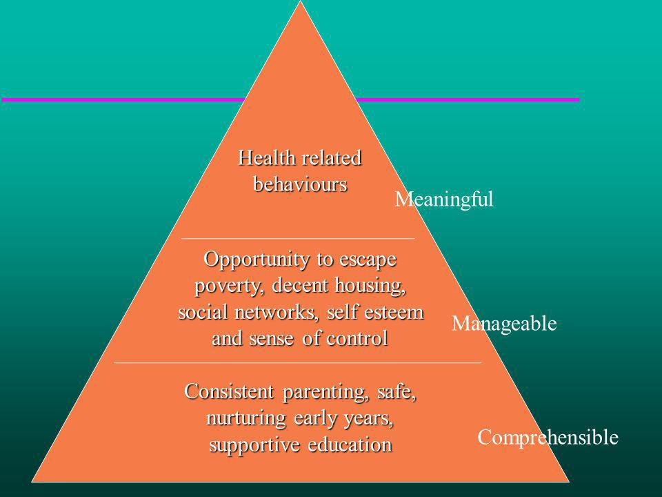 Opportunity to escape poverty, decent housing, social networks, self esteem and sense of control Consistent parenting, safe, nurturing early years, su