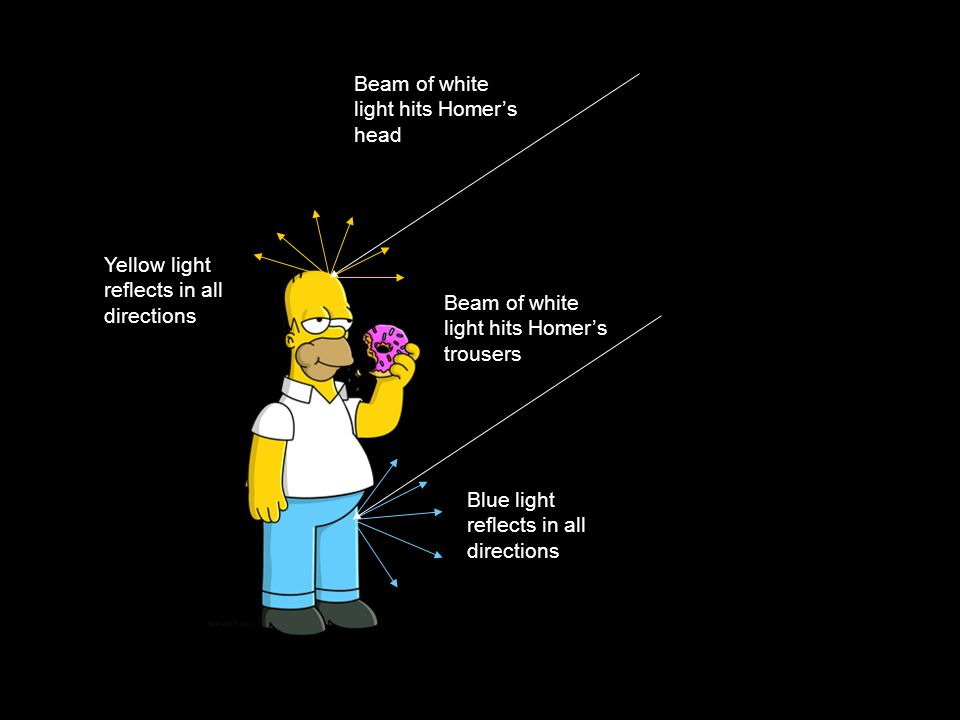 Beam of white light hits Homers head Yellow light reflects in all directions Blue light reflects in all directions Beam of white light hits Homers trousers