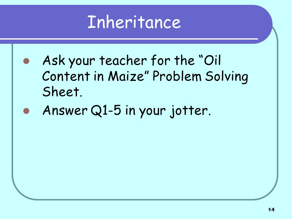 14 Inheritance Ask your teacher for the Oil Content in Maize Problem Solving Sheet. Answer Q1-5 in your jotter.