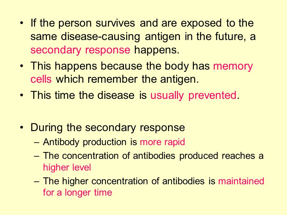 Primary and Secondary Responses When a person is infected by a disease- causing organism, the body responds by producing antibodies. This is the prima