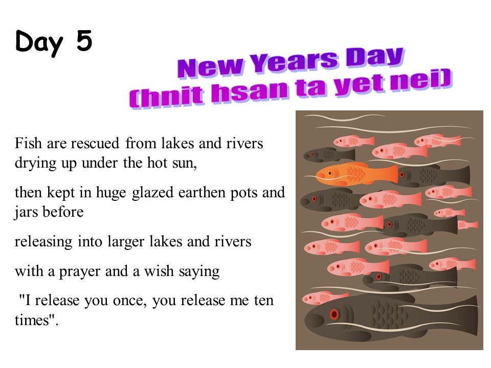 Day 5 Fish are rescued from lakes and rivers drying up under the hot sun, then kept in huge glazed earthen pots and jars before releasing into larger lakes and rivers with a prayer and a wish saying I release you once, you release me ten times .