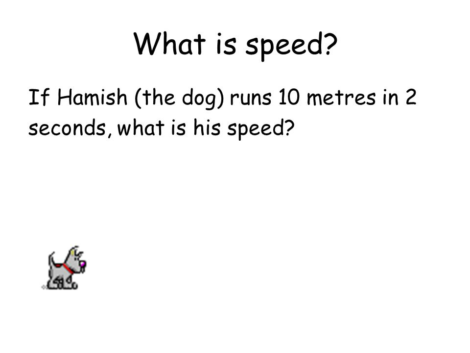 What is speed? If Hamish (the dog) runs 10 metres in 2 seconds, what is his speed?