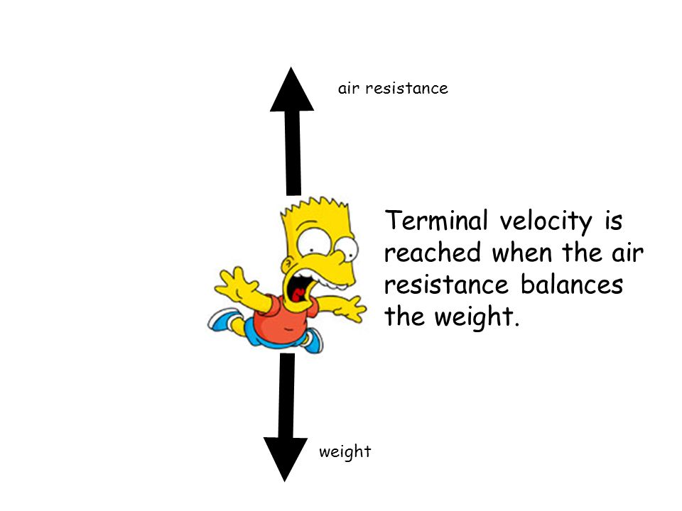 weight air resistance Terminal velocity is reached when the air resistance balances the weight.