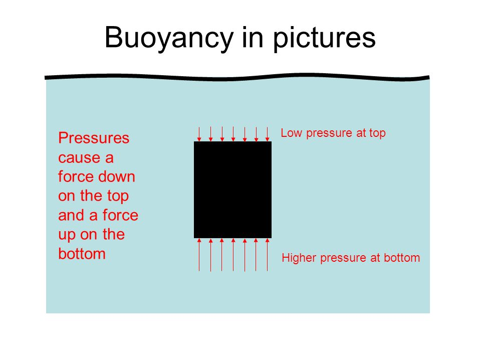 Buoyancy in pictures Pressures cause a force down on the top and a force up on the bottom Low pressure at top Higher pressure at bottom