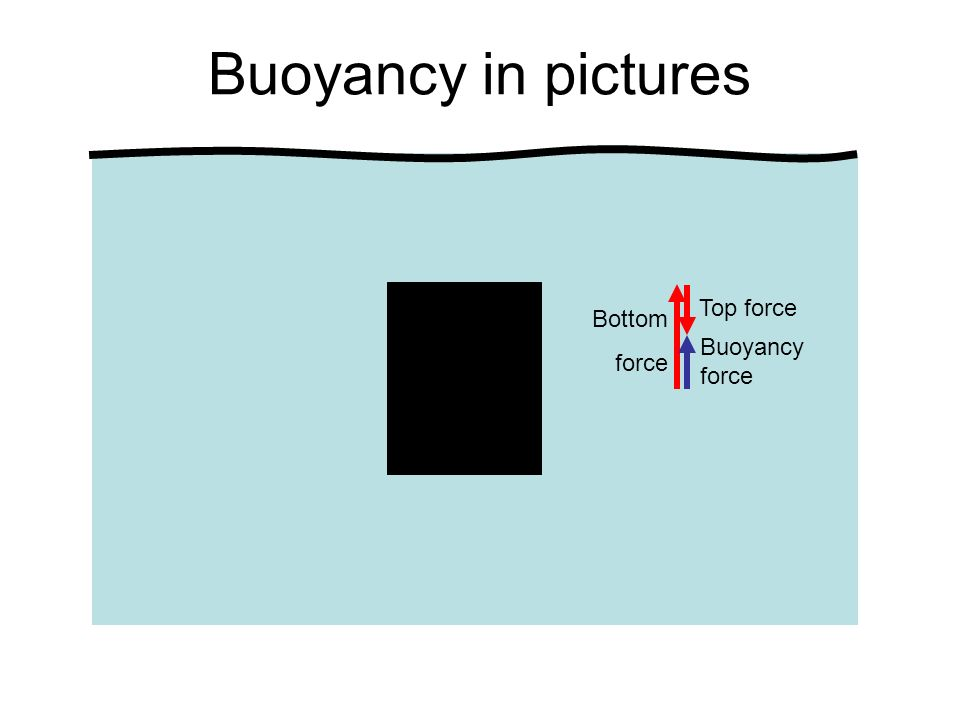 Buoyancy in pictures Buoyancy force Bottom force Top force